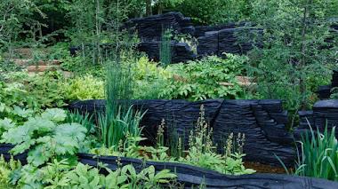 Las plantas pioneras y el jardín de Andy Sturgeon ganan Chelsea 2019
