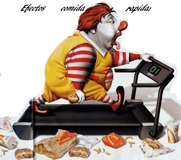 la comida chatarra y sus efectos en la salud ensayo