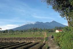 Wisata Kampung di Cinangneng, Ciampea, Bogor, Indonesia