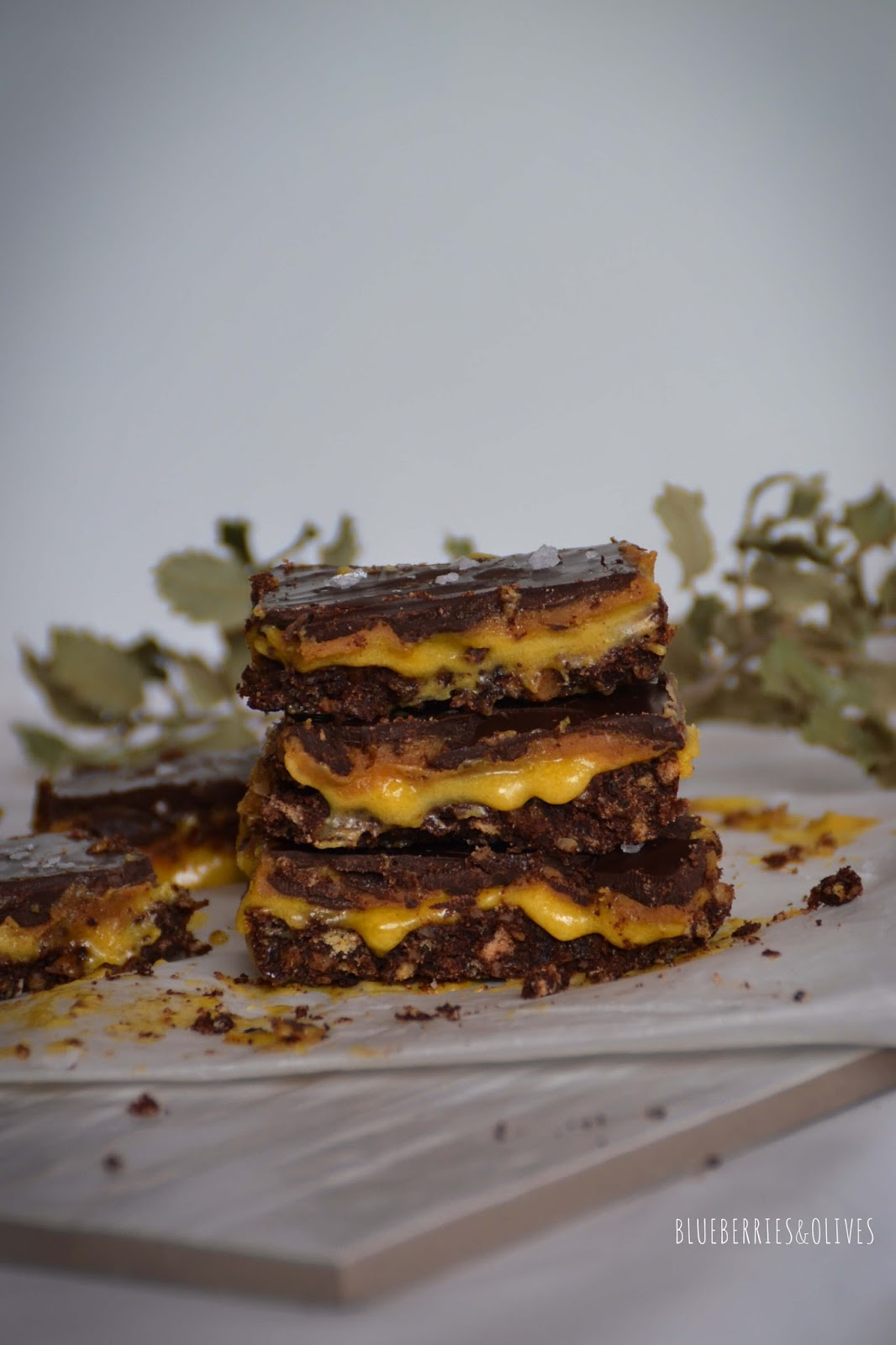 SWEET AND SALTY CHOCOLATE SQUARES