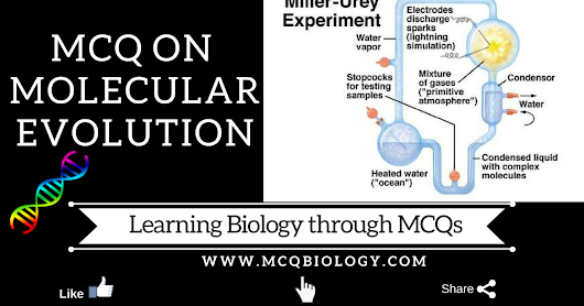 evolution and multiple choice questions Learn biology multiple choice guide evolution with free interactive flashcards choose from 500 different sets of biology multiple choice guide evolution flashcards.