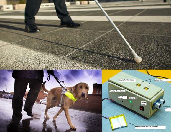 Affordable Dog Training Anti Aggression