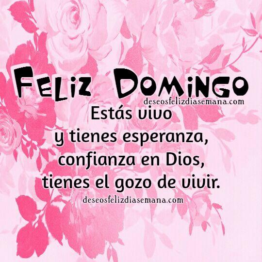 Saludos cortos cristianos de Feliz domingo, alegre,  paz en este domingo, frases cristianas con imagen para mi facebook por Mery Bracho.
