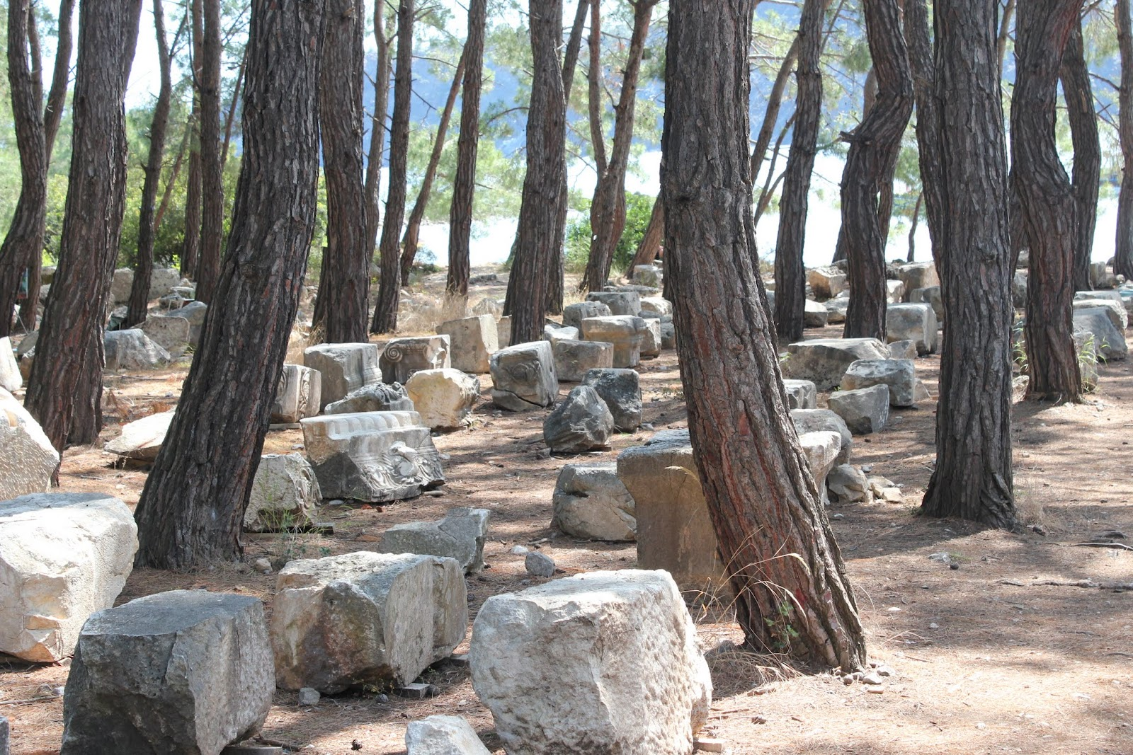 Our Big Move: Phaselis: Only in Turkey could this be a ...