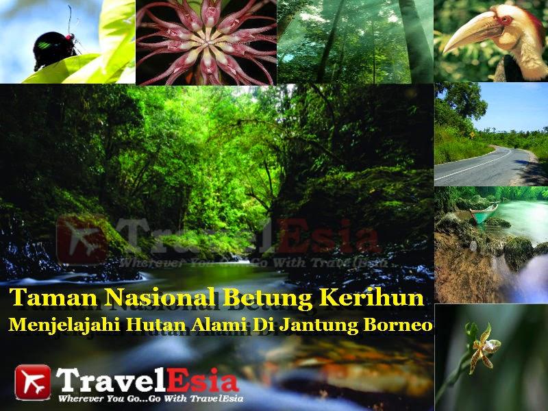 Taman Nasional Betung Karihun
