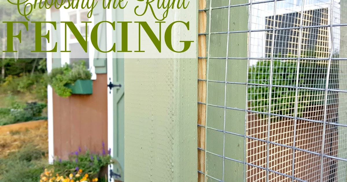 Choosing The Right Fencing For Your Chicken Coop Run Or