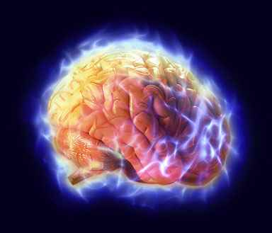 Keajaiban Al Qur'an Sembuhkan Sel Otak