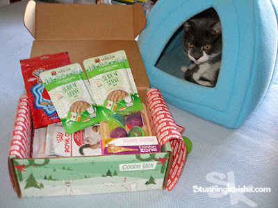 Making Holiday Shopping for Your Cat Easy #ChewyInfluencer