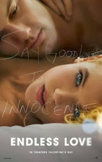Endless Love 映画