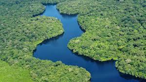 Ecosistemi Amazzonia emigrano causa dighe