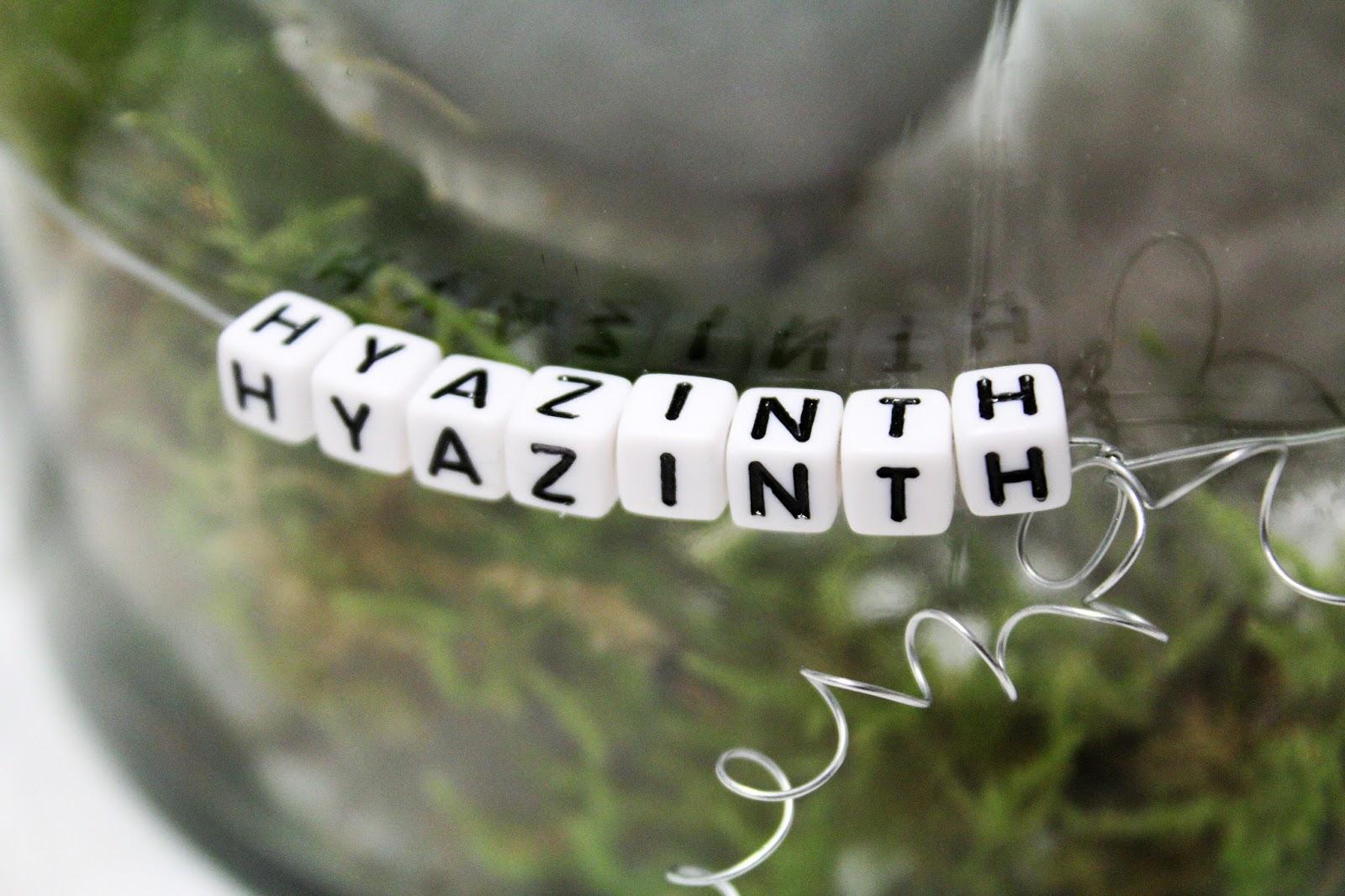 Hyazinthenzwiebeln In Wachs Und Schöne Deko   DIY