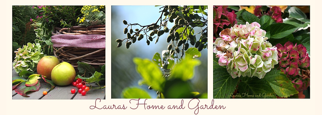 Lauras Home and Garden