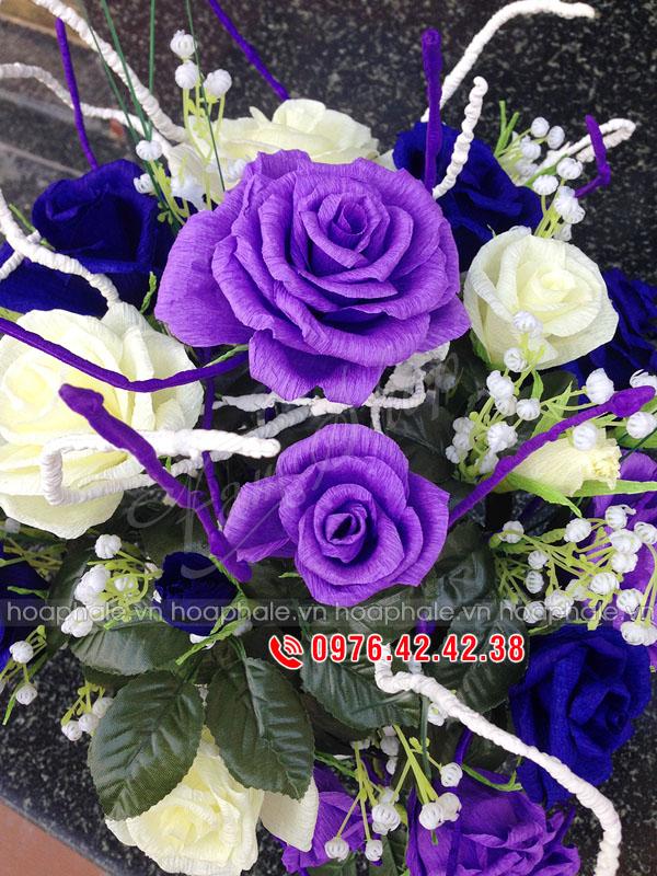 Hoa hồng giấy tím trắng | Hoa giay