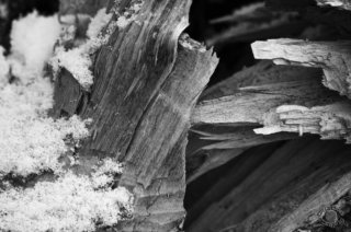 Cramer Imaging's professional quality black and white fine art photograph of split wood and snow in Caribou National Forest, Bannock, Idaho