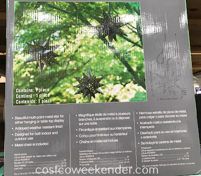 Costco 1031603 - Inside Outside Garden LED Star Light: great for decoration in and around the house