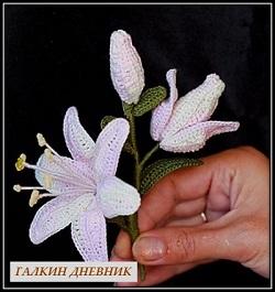 rukodelie cveti shema kryuchok lilii