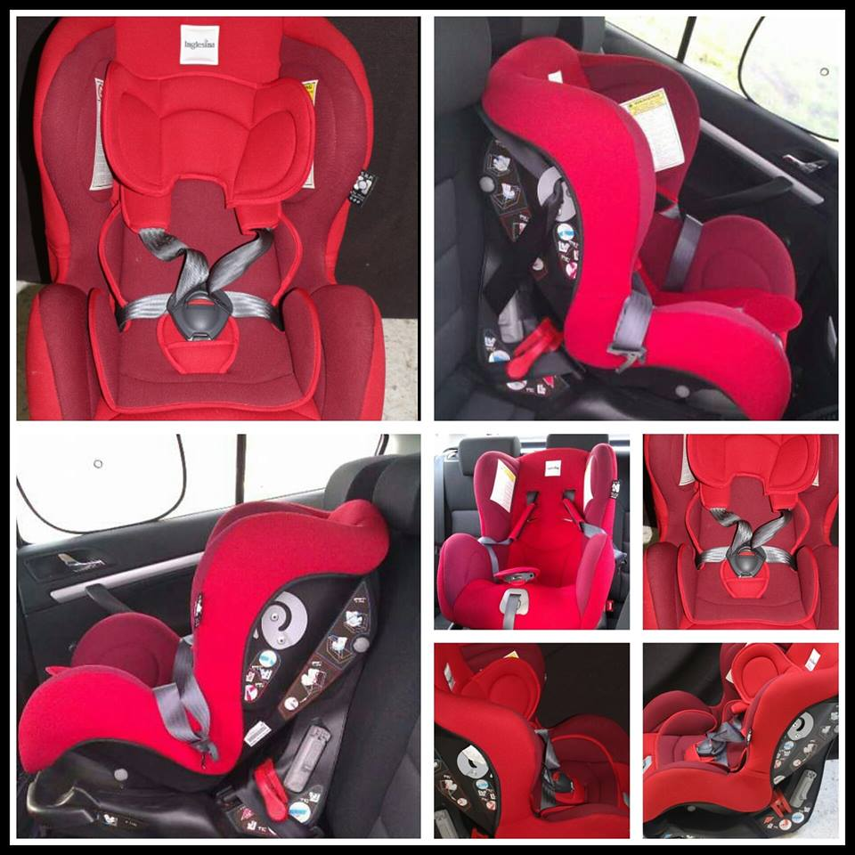 Inglesina Marco Polo Convertible Car Seat Amy Sweety Store