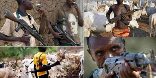 Herdsmen in Military Uniform Killing People in Kogi – Reps Member Raises Alarm