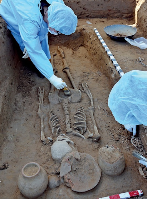 Harappa grave of ancient 'couple' reveals secrets