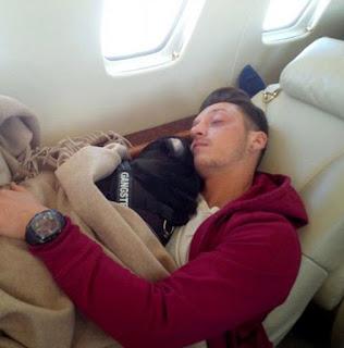 Mesut Ozil dogs