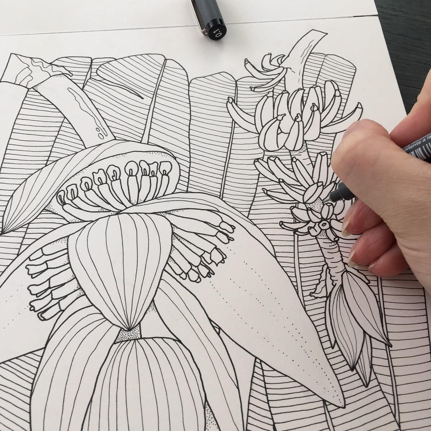 Voorbeelden Van Kleurplaten Voor Volwassenen.Schilderijen Van Orchideeen Andere Botanische Werken Kleuren Voor