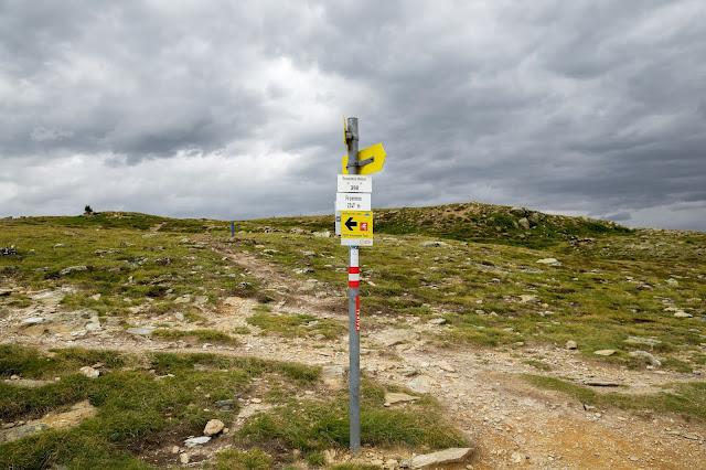 Alpenrosensteig vom Fisser Joch nach Fiss  Wanderung Serfaus-Fiss-Ladis 5