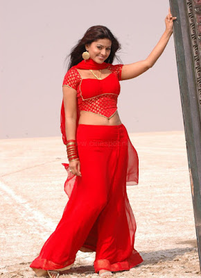 sneha in hot saree