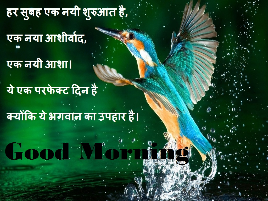 10 Best Good Morning Hindi Shayari With Images