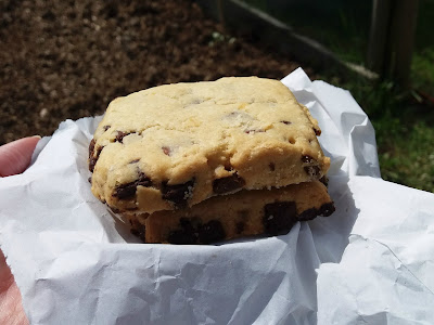chocolate chip shortbread squares - www.growourown.blogspot.com