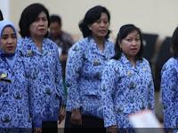 Kabar Gembira !! Ini Syarat Honorer Di Atas 35 Tahun Boleh Ikut CPNS 2018