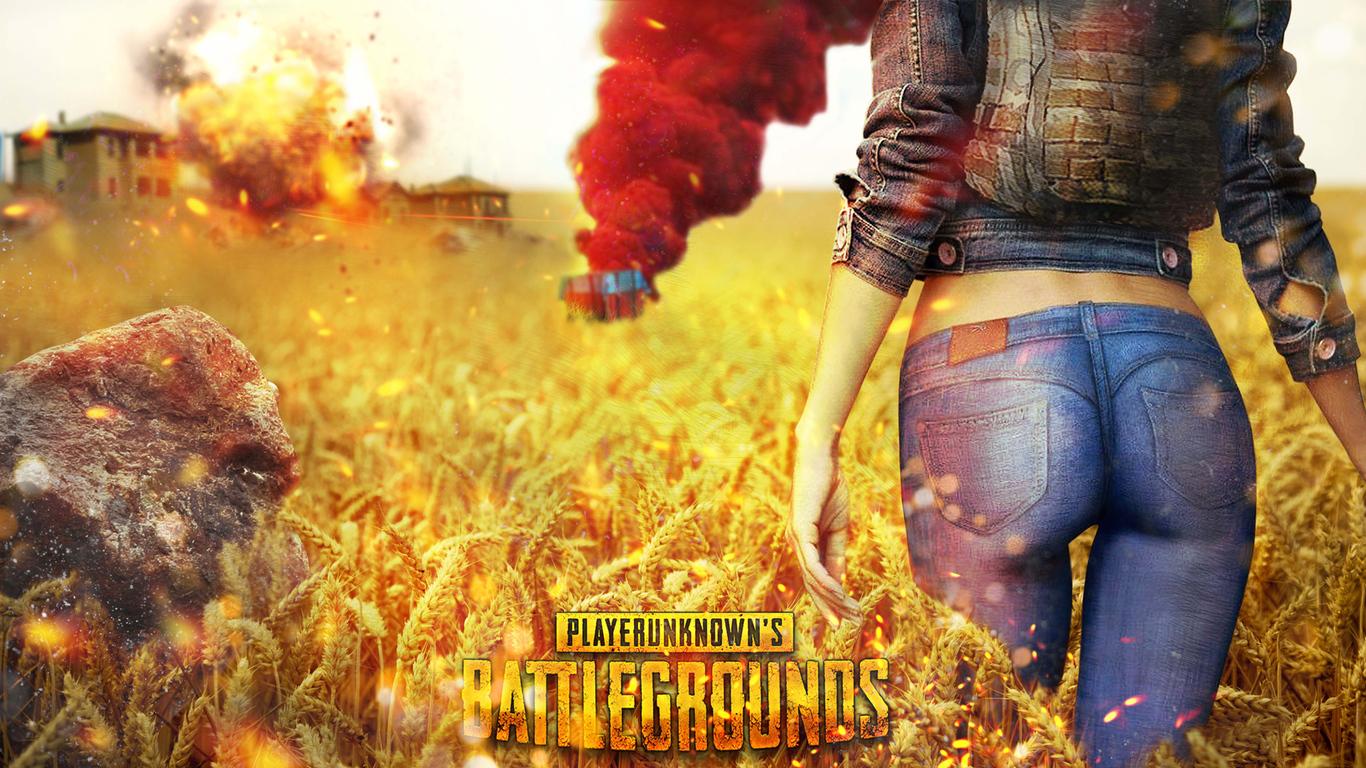 PlayerUnknowns Battlegrounds Wallpapers (PUBG)