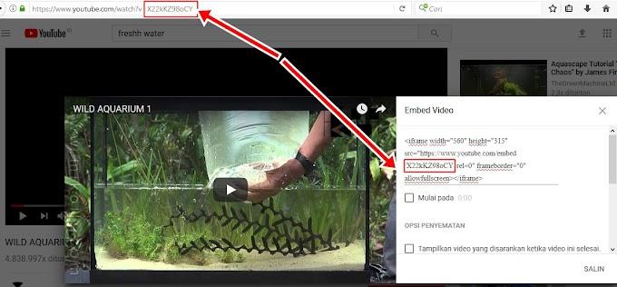 Cara Menampilkan Otomatis Thumbnail Video Youtube Di Related Posts Dan Popular Posts Blogger