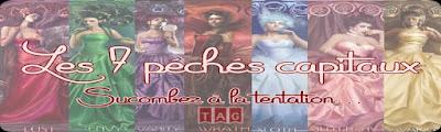 http://unpeudelecture.blogspot.fr/2015/11/tag-les-7-peches-capitaux-livresques.html