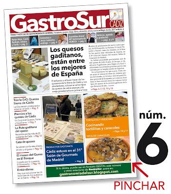 GastroSur nº6