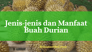 Jenis-jenis dan manfaat buah durian