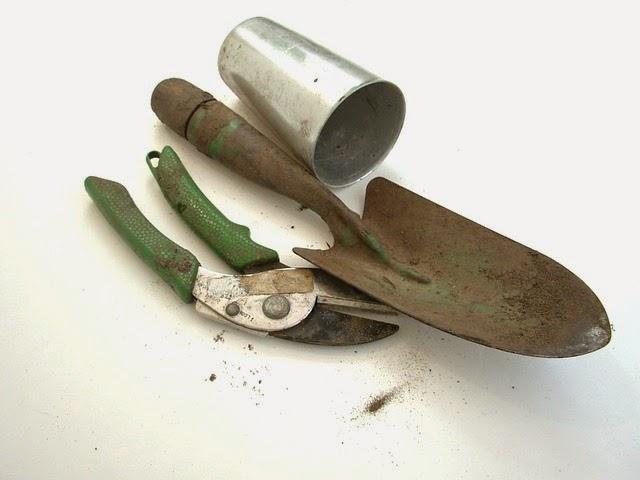 Gardening Tools, Techniques & Tricks