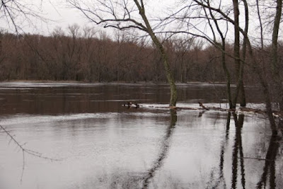 high Spring flows in the St. Croix River