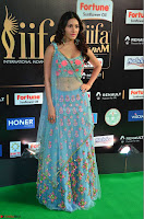 Amyra Dastur in Flower Print Choli Transparent Chunni at IIFA Utsavam Awards 13.JPG