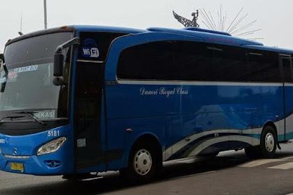 Jadwal dan Tiket Bus Damri Bandara Soekarno Hatta