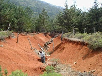 Degradasi lahan dalam mencapai ketahanan pangan - berbagaireviews.com
