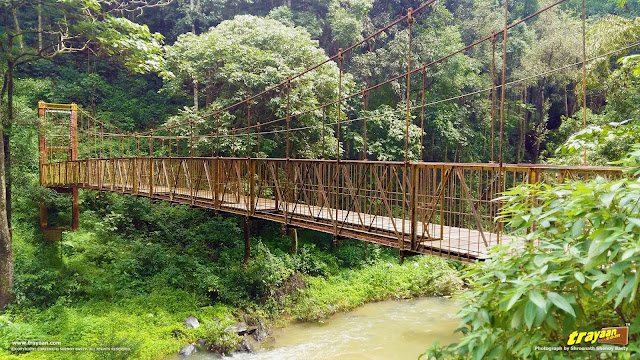 The hanging footbridge across River Kaveri, before Abbi falls