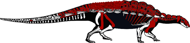 Anky%2Bskeleton.png
