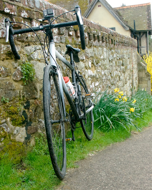 Daffodils, cycling, spring at last