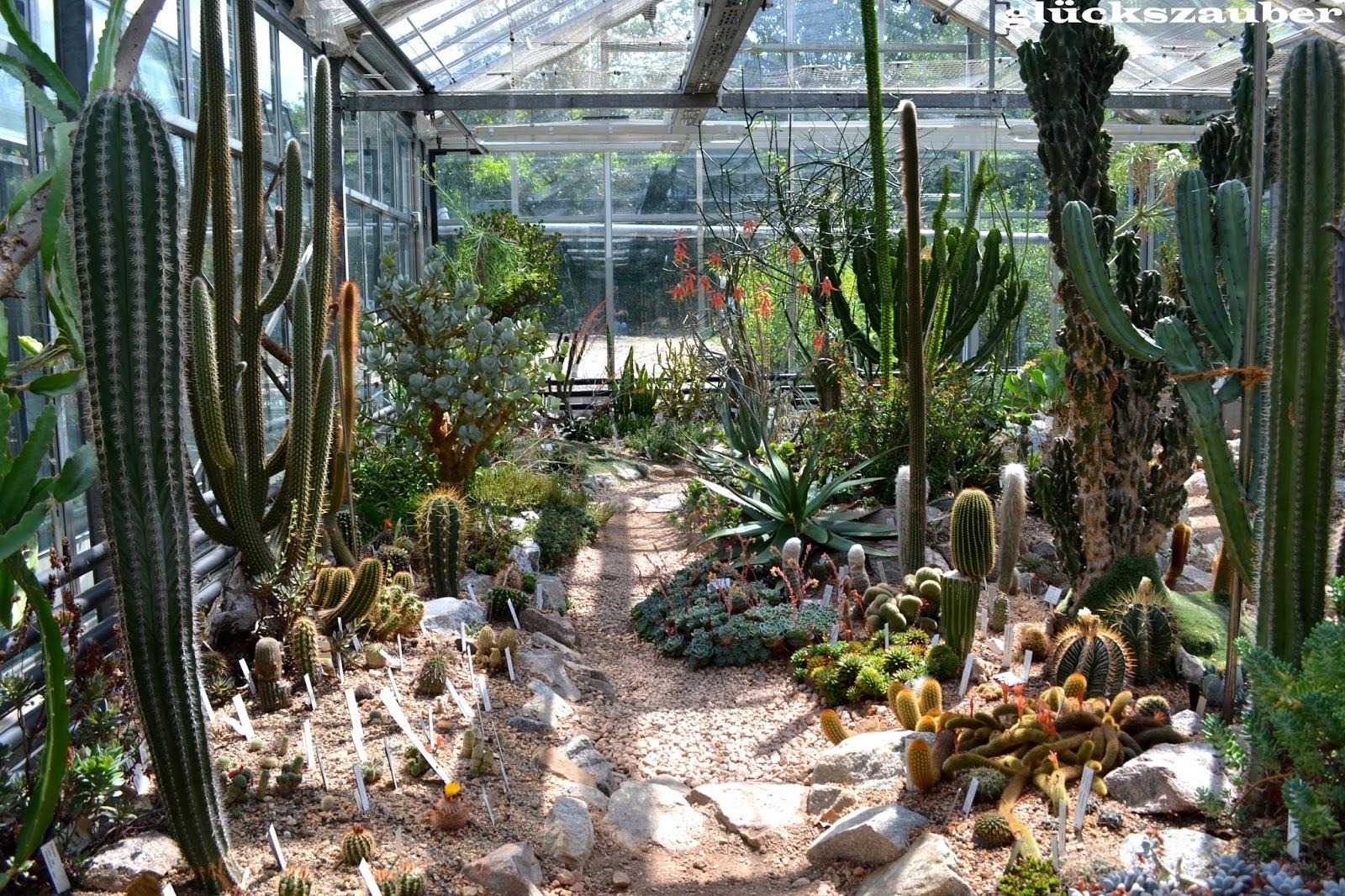 Regensburg Botanischer Garten