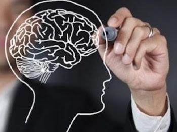 Cara Mudah Meningkatkan Kinerja Otak