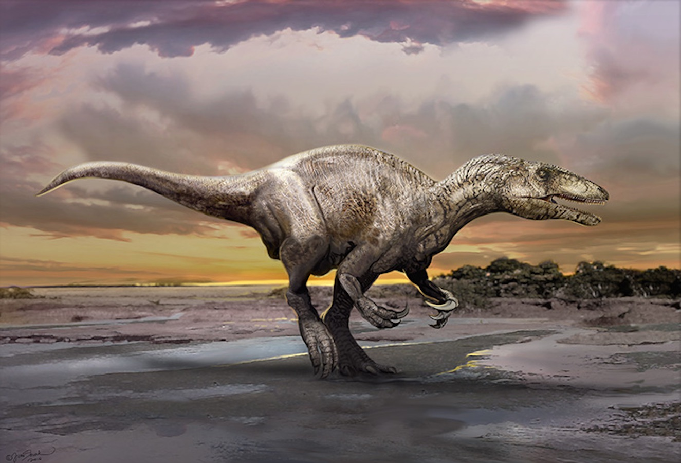 Species New to Science: Paleontology • 2016 Murusraptor ...