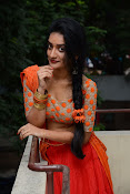 Janani Reddy latest sizzling photos-thumbnail-20