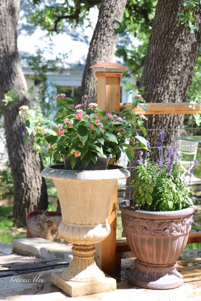 french-style-garden-urns