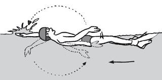 Cara melakukan renang gaya punggung