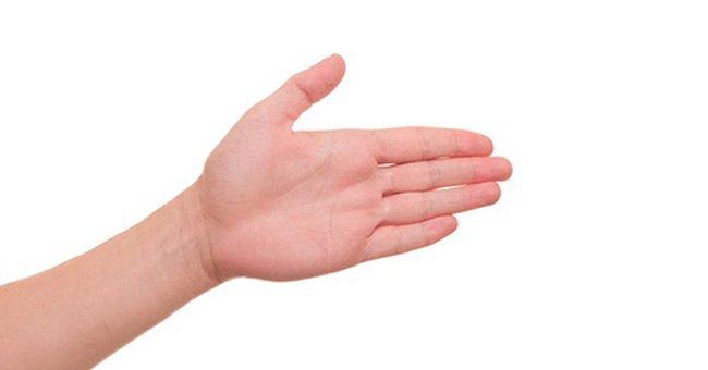 Tại sao ngón tay cái chỉ có hai dốt